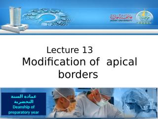 lecture 13 (1436).ppt